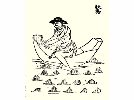 Ancient Rice Cultivation